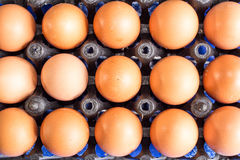 Eggs. In the black basket Stock Photography