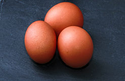 Eggs on a black slate Stock Images