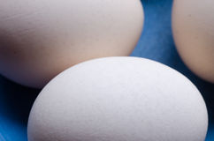 Eggs on blue plate Royalty Free Stock Photo