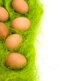Eggs border Stock Images