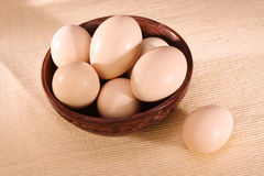 Eggs in a bowl Royalty Free Stock Photos