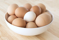 Eggs in Bowl, Brown, White, Light Brown.. Royalty Free Stock Photography