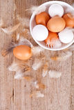 Eggs in a bowl  and feathers Stock Photography