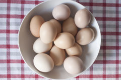 Eggs. On a bowl on a squared towel Royalty Free Stock Photo