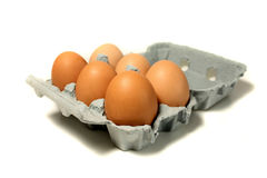 Eggs in a Box. Six Eggs in a Box Stock Images