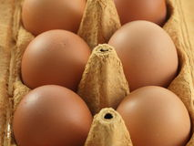 Eggs in the box. Closeup of six eggs in the cardboard box stock photos