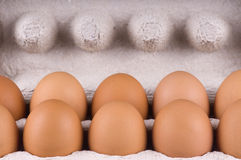Eggs in box. Open tne eggbox and eggs Stock Photos