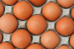 Eggs in the box Royalty Free Stock Photo