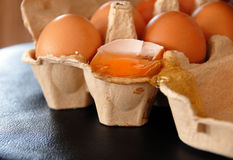 Eggs in box Stock Image