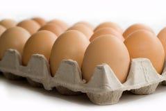 Eggs in box Royalty Free Stock Photos