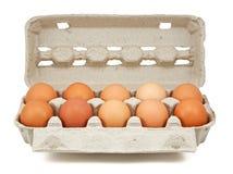Eggs in the box Stock Photos