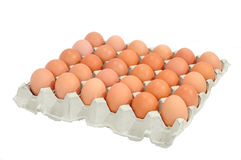 Eggs in a box Royalty Free Stock Photography