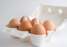 Eggs in a box. Six eggs in an open box, over a white background royalty free stock photo