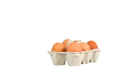 Eggs in box Stock Photos