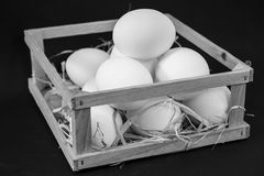 Eggs in a box on a black background stock photo