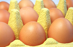 Eggs in box close up Stock Photos
