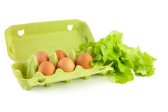 Eggs in box isolated Royalty Free Stock Photography
