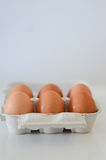 Eggs. On box over white background Stock Photography