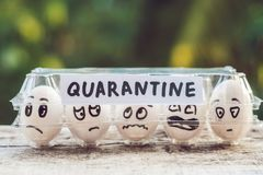 Eggs in a box, quarantine. Eggs are considered when passing quarantine at the border royalty free stock photos