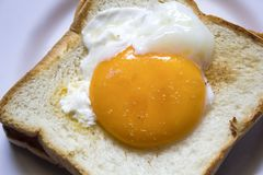 The eggs on the bread are in a white plate. stock photos