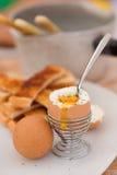 Eggs for breakfast Stock Photos