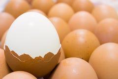 Eggs. This broken egg is finish Stock Photo