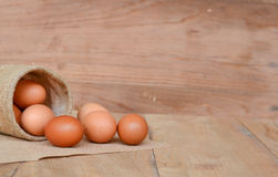 Eggs brown chicken background Royalty Free Stock Photos