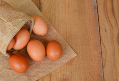 Eggs brown chicken background Stock Images