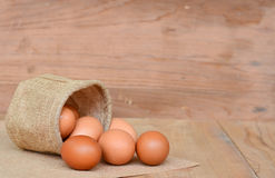 Eggs brown chicken background Stock Photography