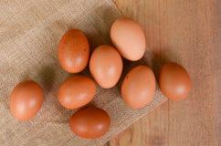 Eggs brown chicken background Stock Photos