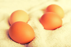 Eggs brown chicken. healthy food Stock Photo