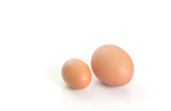 Eggs. Royalty Free Stock Images