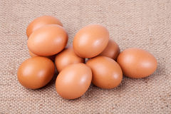 Eggs on brown sack Stock Images