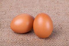 Eggs on brown sack Stock Image