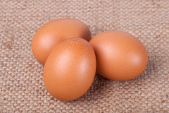 Eggs on brown sack Stock Photo