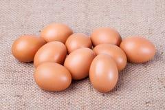 Eggs on brown sack Royalty Free Stock Image