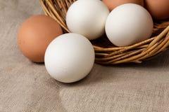 Eggs on a burlap Stock Photos