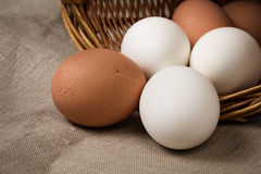 Eggs on a burlap Royalty Free Stock Photo