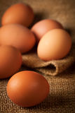 Eggs on burlap Royalty Free Stock Photo