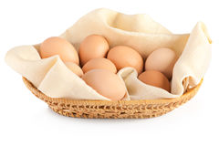 Eggs on canvas Stock Photography