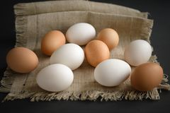 Eggs at a canvas on a dark background royalty free stock photo