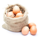 Eggs in canvas sack Stock Photo