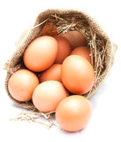 Eggs in canvas sack Royalty Free Stock Image