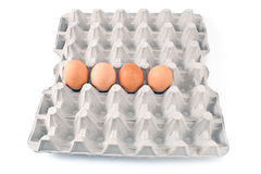 Eggs in cardboard Royalty Free Stock Photos