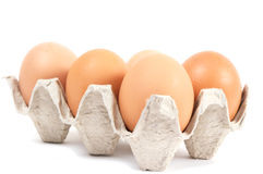 Eggs in cardboard box Stock Photos