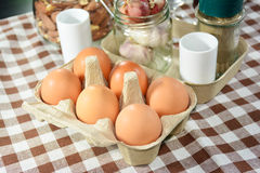 Eggs in cardboard box. Stock Photography