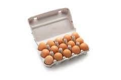 Eggs in cardboard box Royalty Free Stock Photos