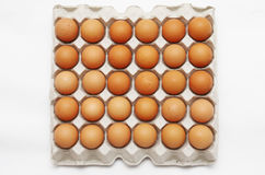 Eggs in cardboard container. An eggs in cardboard container Royalty Free Stock Photos