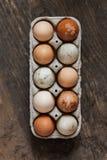 Eggs Stock Photo