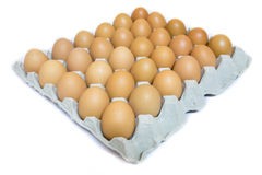 Eggs in the cardboard Royalty Free Stock Images